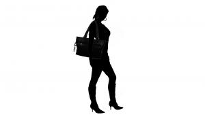 Briefcase  Piquadro Link BD1589LK Nero