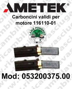 COPPIA di Carboncini Motore aspirazione validi X motore Lamb Ametek 116110-01