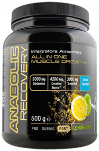 Post Workout Anabolic Recovery - Supplement 500 g