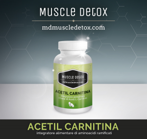 Acetyl Carnitine: Burns Fat and Improves Memory, Learning and Mood Levels