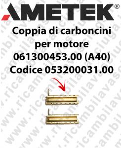 COPPIA di Carboncini Motore aspirazione per motore Ametek 061300453.00 (A40) 2 x Cod: 053200031.00