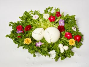 Mozzarella di Bufala da 500 gr