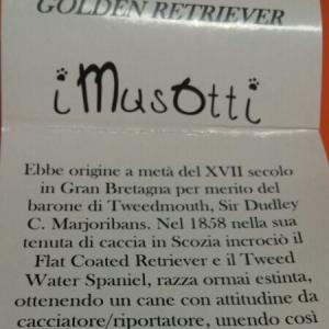Ciondolo in argento 925 Golden Retriever vendita on line | I MUSOTTI BRUNI GIOIELLERIA