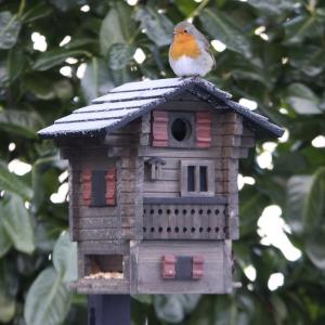 Casa per uccelli / WG215 - Multiholk casetta di montagna