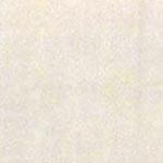 Coppia di federe sfuse in puro cotone tinta unita ISTAR - panna