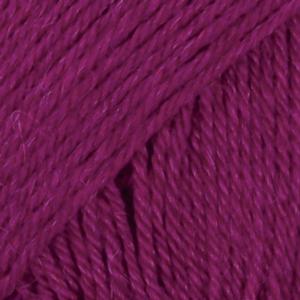 17-prugna-uni-colour
