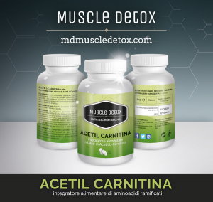 OFFER 26 + 4 pieces Acetyl Carnitine: Burns Fat and Improves Memory, Learning and Mood Levels