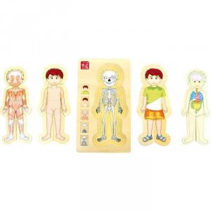 Puzzle gioco asilo anatomia corpo umano in legno Maschietto