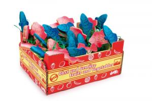 Cassetta con pesci per giocare mercato bancarella per bambini