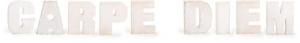 Carpe diem scritta decorativa in legno arredo casa negozio