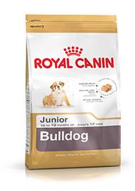 Bulldog Puppy confezione 12kg