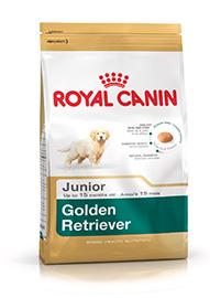 Golden Retriever Puppy confezione 12kg