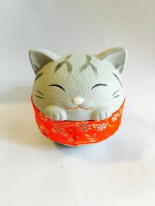 Gatto grigio, con Obi rosso