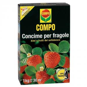 COMPO Compo Fragole Concimi Granulari