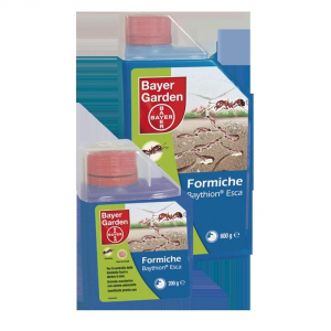 Bayer Baythion Insecticide For Ants In Esca 200 Grams Garden And Gardening