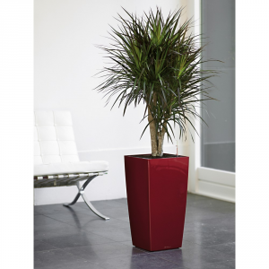 Lechuza Cubic Pot With Set Of Red Irrigation 40 Cm Indoor Vases Plastic