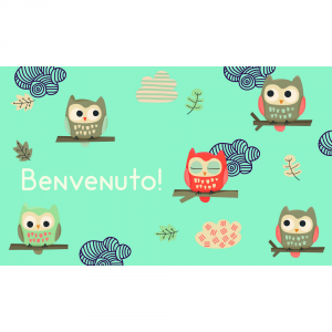 Gift Company Coir Doormat Welcome Owls 75x45 Interior Furnishing Various Goods