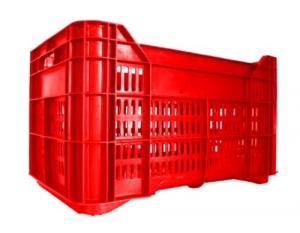 Cassa Plastica Forata Fondo Chiuso Lt 40 Cm L 53,5Xp35Xh31,5 Giardinaggio Enologia