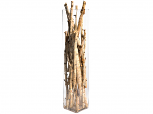 H&H Vaso Vetro Trasparente Quadro Cm15Xh80 Arredo E Decorazioni Casa