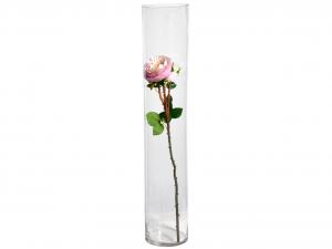 H&H Vaso Vetro Trasparente Cilindrico Cm15Xh80 Arredo E Decorazioni Casa
