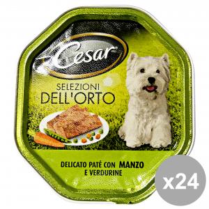 Set 14 CESAR 150 gr. umido patãŝ manzo-verdure cibo per cani