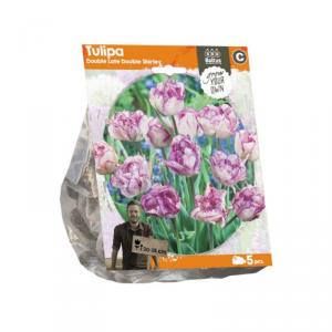 Baltus Tulipa Double Late Double Shi. Flower Bulbs In Format Bag