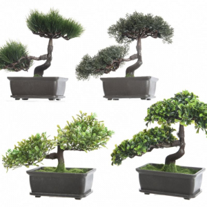 ZEN GARDEN Plc bonsai tree in pot 4ass variant fiori finti