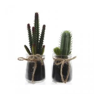 EXOTICA Plc cactus in glass pot 2ass 1 variant pianta finta