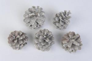 KAEMINGK Pine Cone Colour: White Washed Size: 15X15Cm Ghirlande E Frange Natale 581