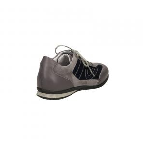 ax81-grigio
