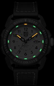 ICE-SAR Arctic - 1007