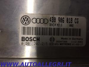 ECU CENTRALINA MOTORE AUDI VW BOSCH 0261207215 0 261 207 215