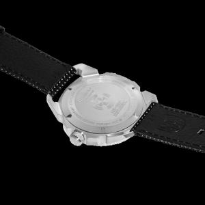 ICE-SAR Arctic - 1201
