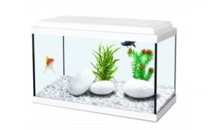 Acquario Nanolife KIDZ