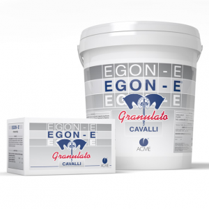 EGON-E - CAVALLI