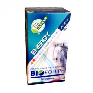 ENERGY 100g - cavalli