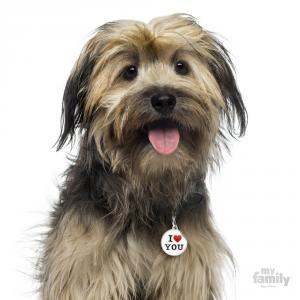 Medaglietta per Cani Collezione Charm