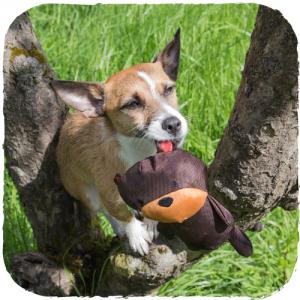Toby L'orsetto - Peluche in stoffa imbottita per cani