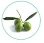 Concime Cuthiol Foglia kg 1,5