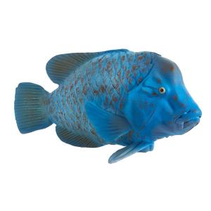 Statuina Animal Planet Pesce Achoerodus