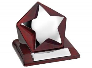 Trofeo stella acciaio e legno