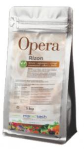 Rizon Micorizze