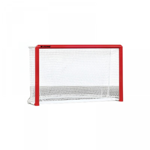 Regular Goals for Roller Hockey