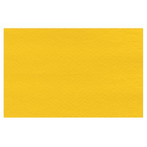 tovagliette 30x40 giallo sole 250 pezzi servizi generali catering stoviglie