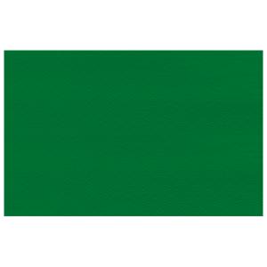 tovagliette 30x40 verde foresta 250 pezzi servizi generali catering stoviglie
