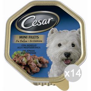 Set 14 CESAR Ricetta Campa Vaschetta Manzo Pasta Car 150Gr Articolo Per Cani