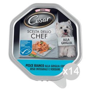 Set 14 CESAR Scelte Chef Vaschetta Pesce Riso Verd 150Gr Articolo Per Cani