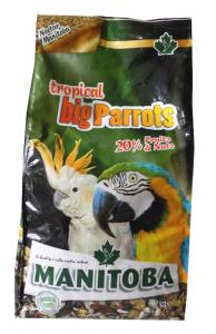 Miscuglio Tropical Big Parrots Manitoba kg.2
