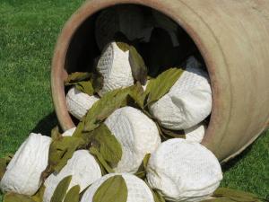 Giara in foglie di Salvia - 400gr