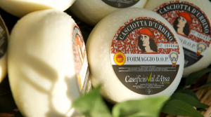 Casciotta d'Urbino DOP - 500gr/1Kg